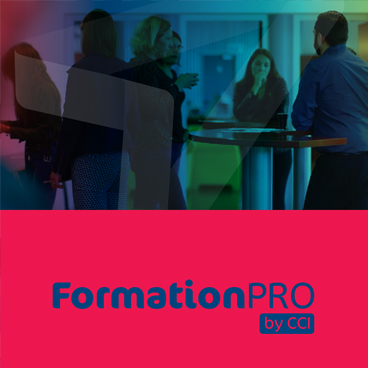 FormationPro : planning S2 2019