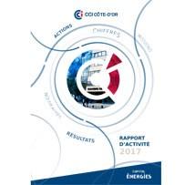CCI Côte-d'Or : Rapport d'activité 2017